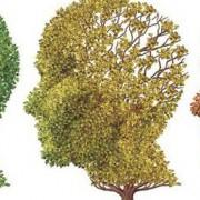 deterioro-cognitivo-neurologo-sevilla