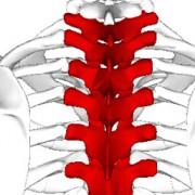 columna-parkinson-neurologo-sevilla